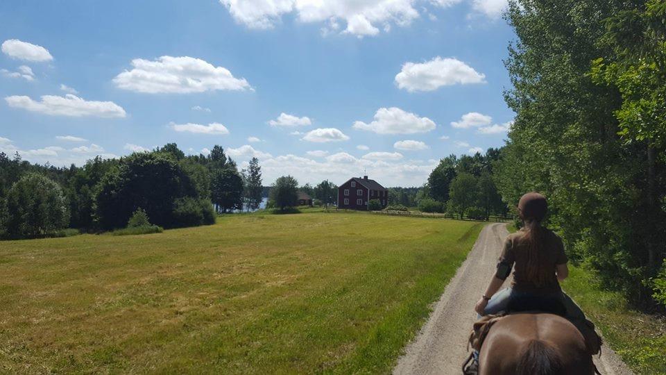 Rida i Smålands natur