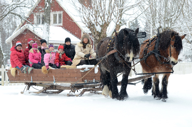 A sleigh ride in winter