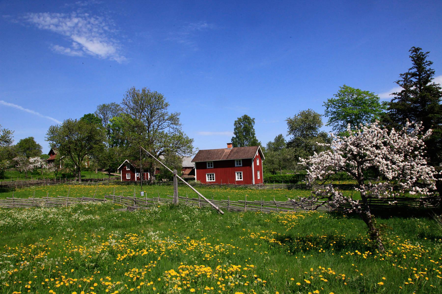 Småjordbrukslandskapet i Åsens By