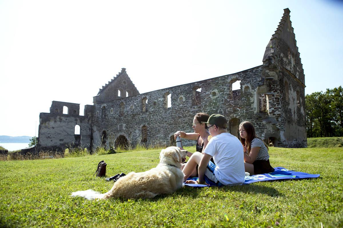 Visingsborg ist nur eine von zahlreichen Ruinen auf der Insel Visingsö
