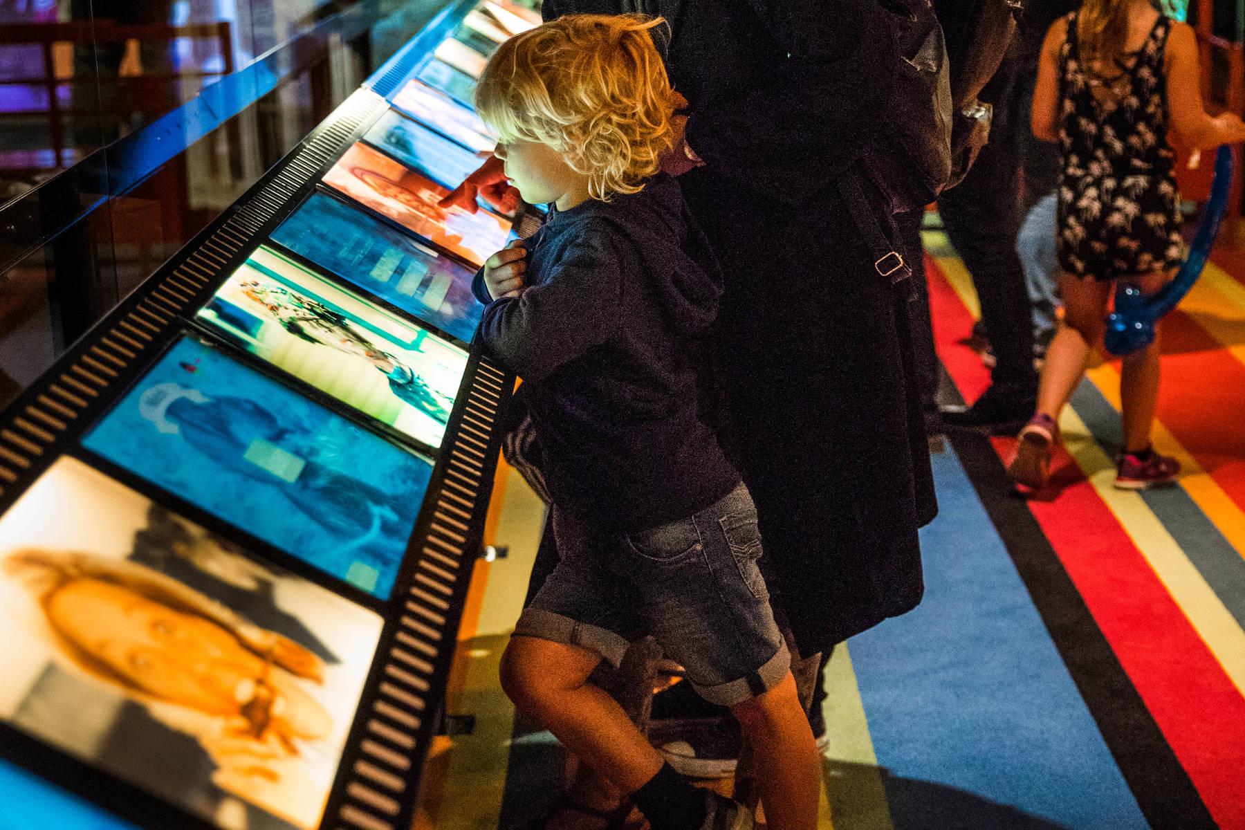 Im interaktiven Filmdorf Småland