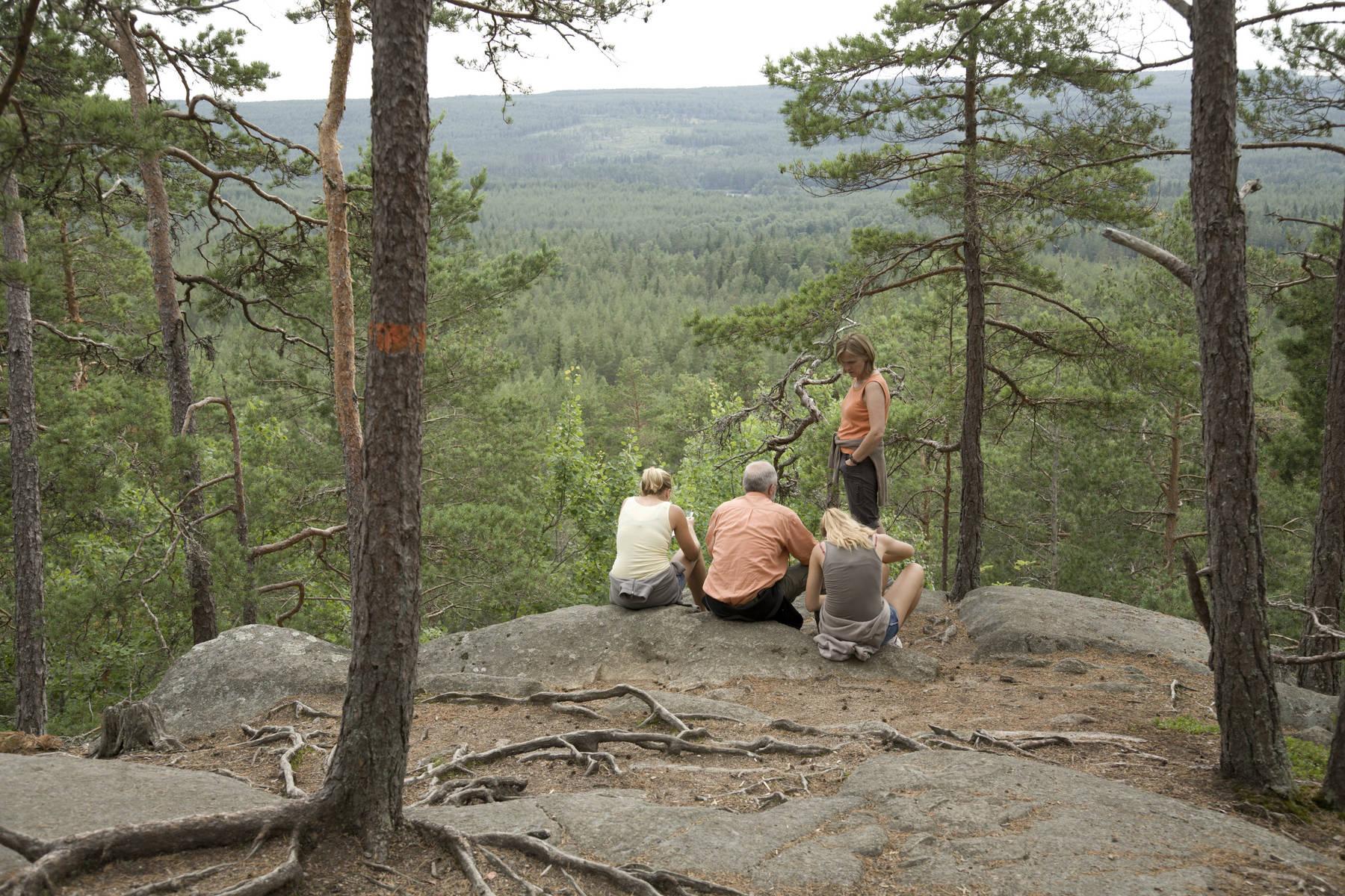 Klippe im småländischen Urwald: Idhöjden im Norra Kvill Nationalpark