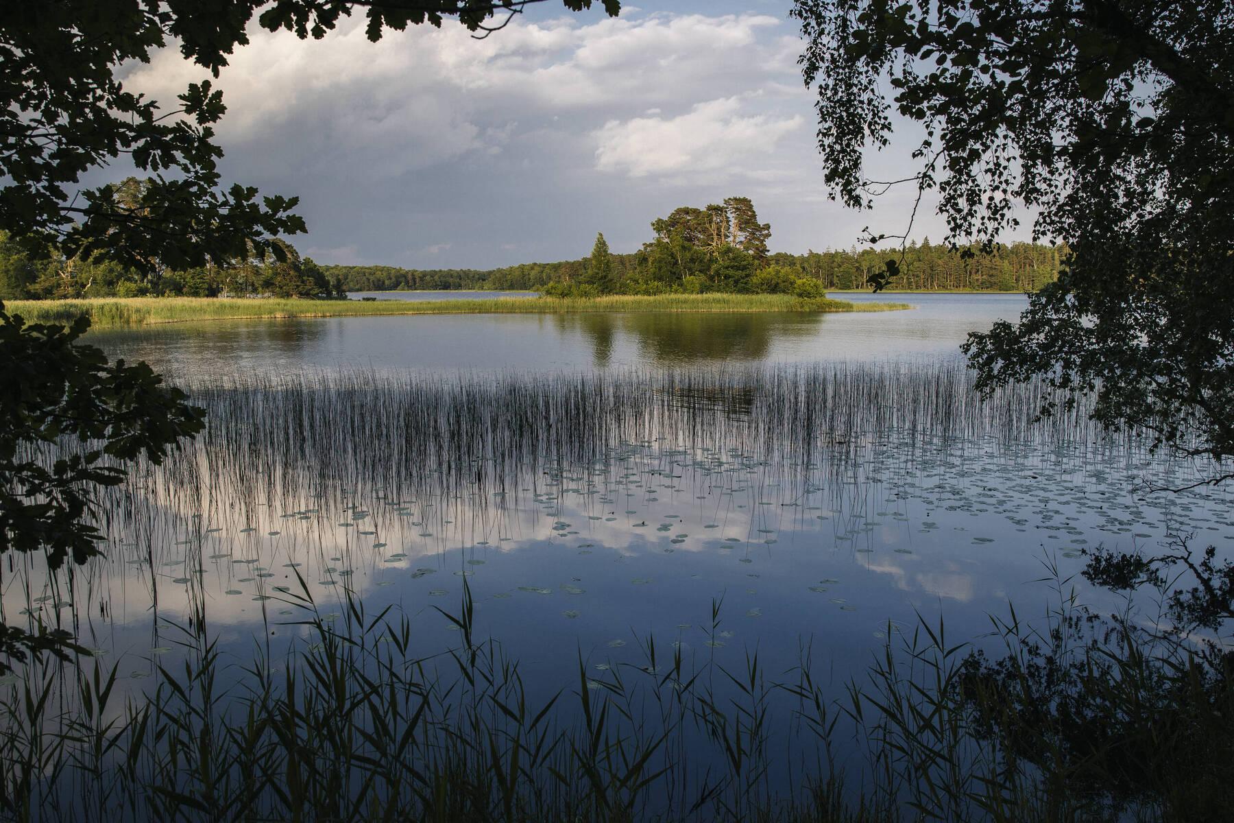 Nationalpark Åsnen, Bjurkärr