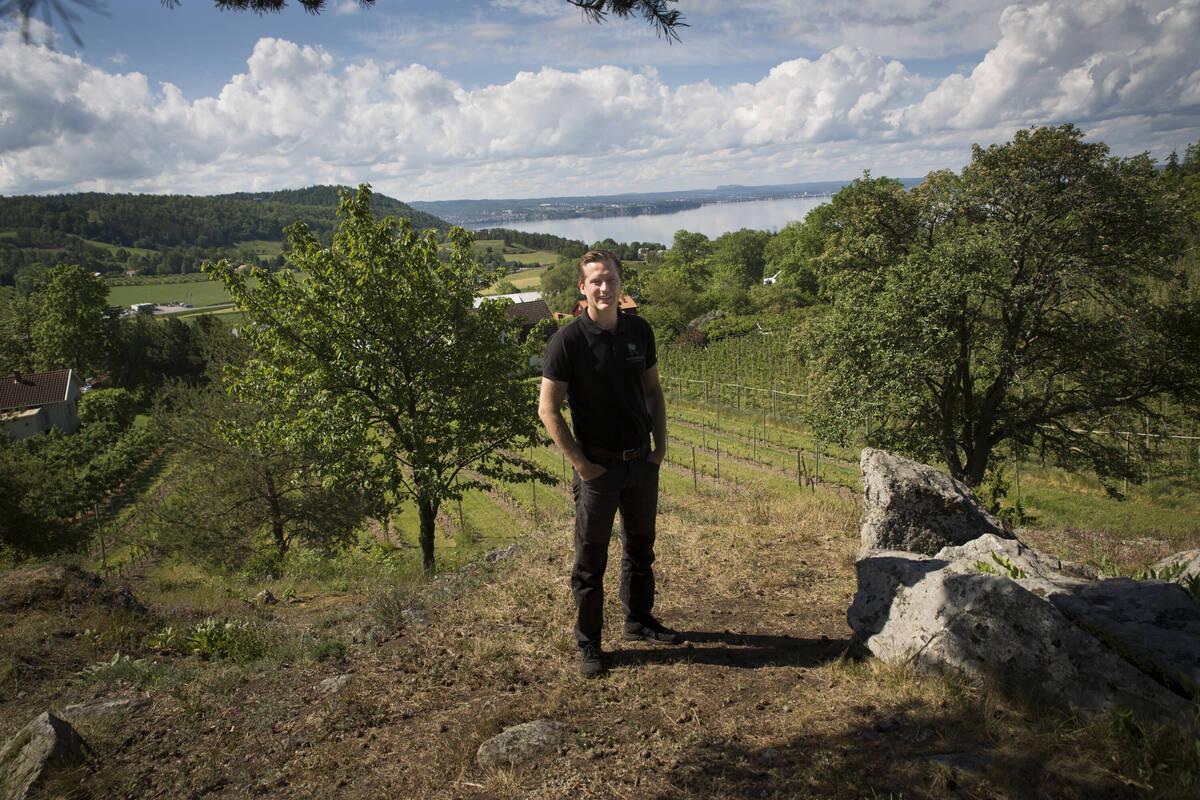 David Rudenstam, Apfelbauer in dritter Generation