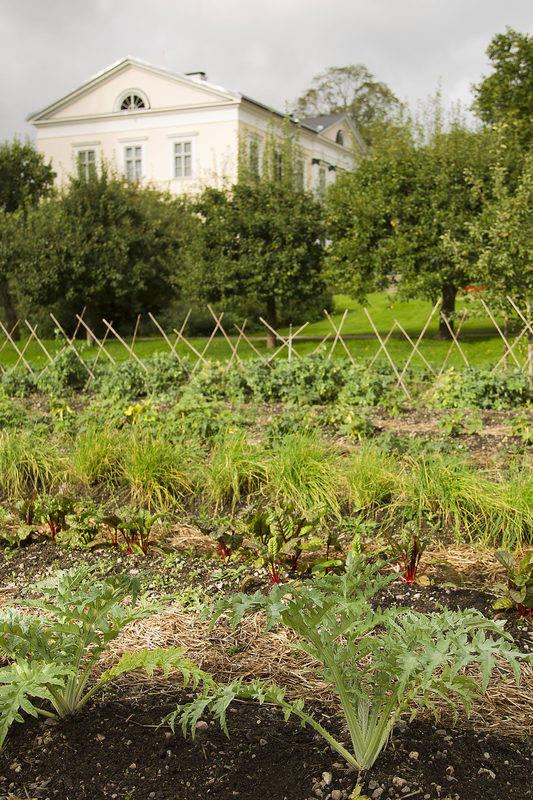 The kitchen gardens
