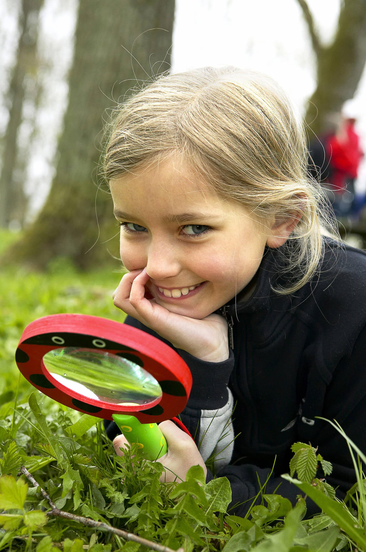 Spying on bugs