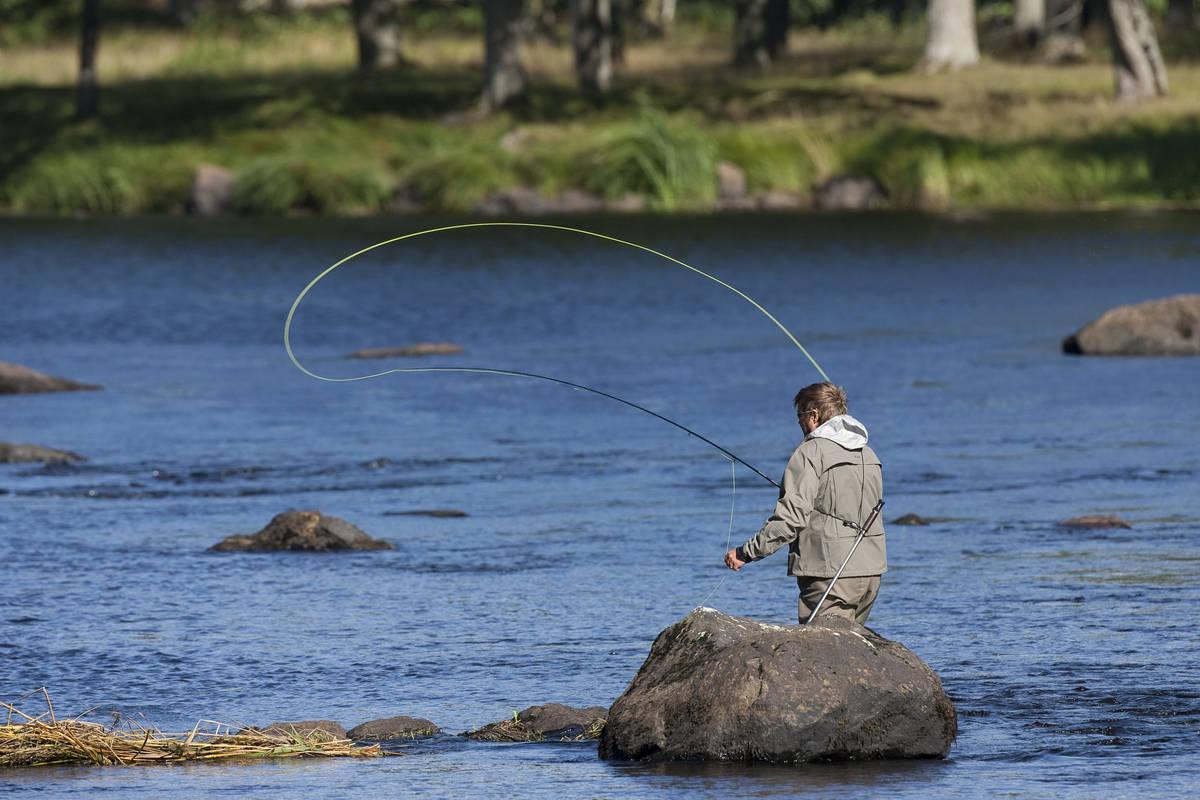 Fly fishing in Emån