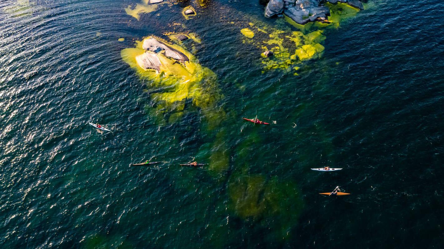 Kayaking among the skerries and islands in Västervik