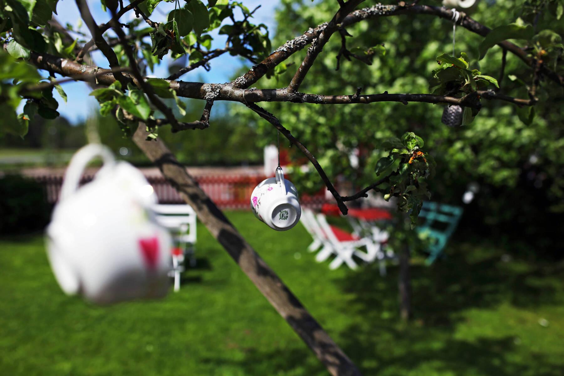 Tekoppar i trädgården hos Stockhultgårdens Tebod