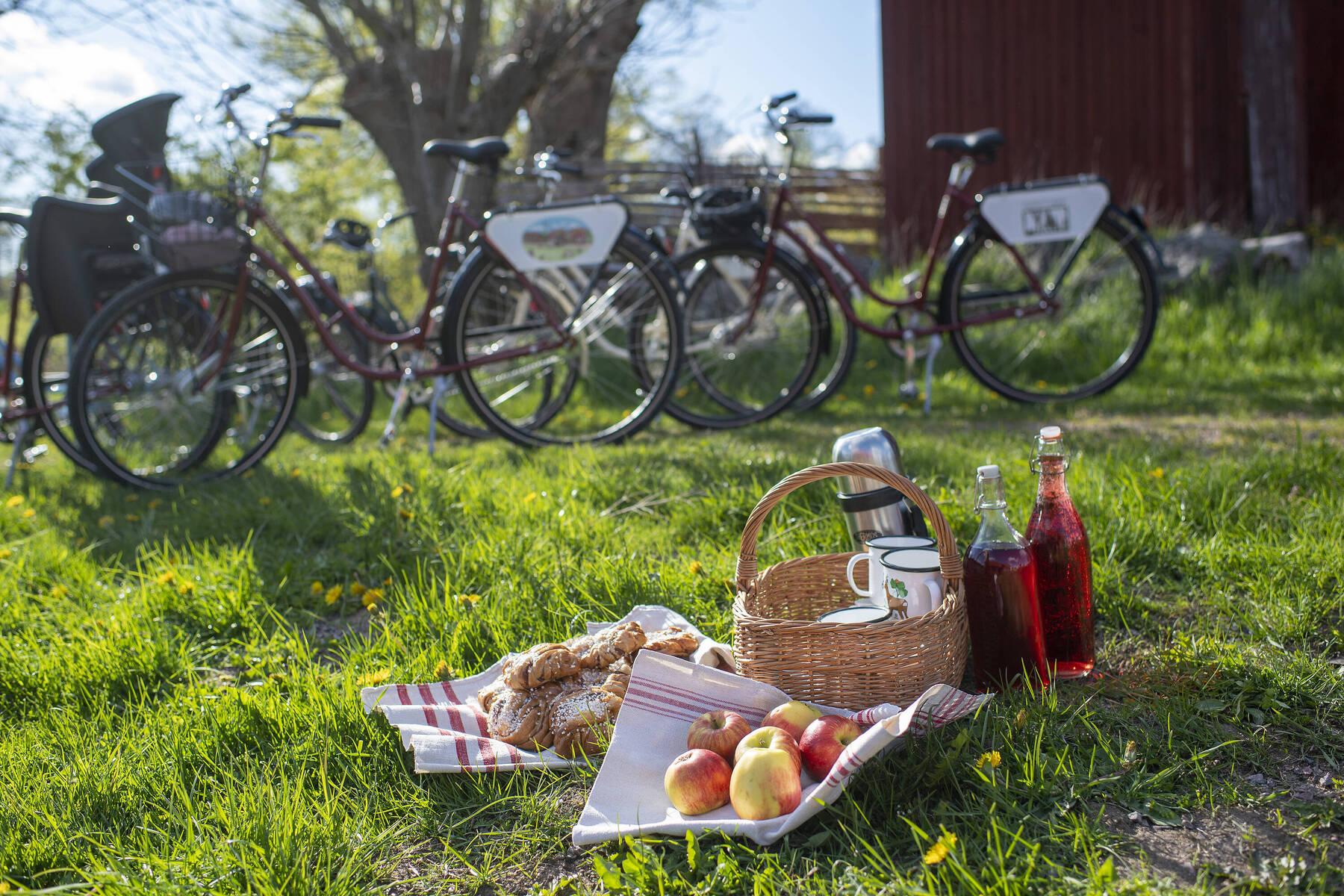 Cykla i Filmlandsakpet Småland