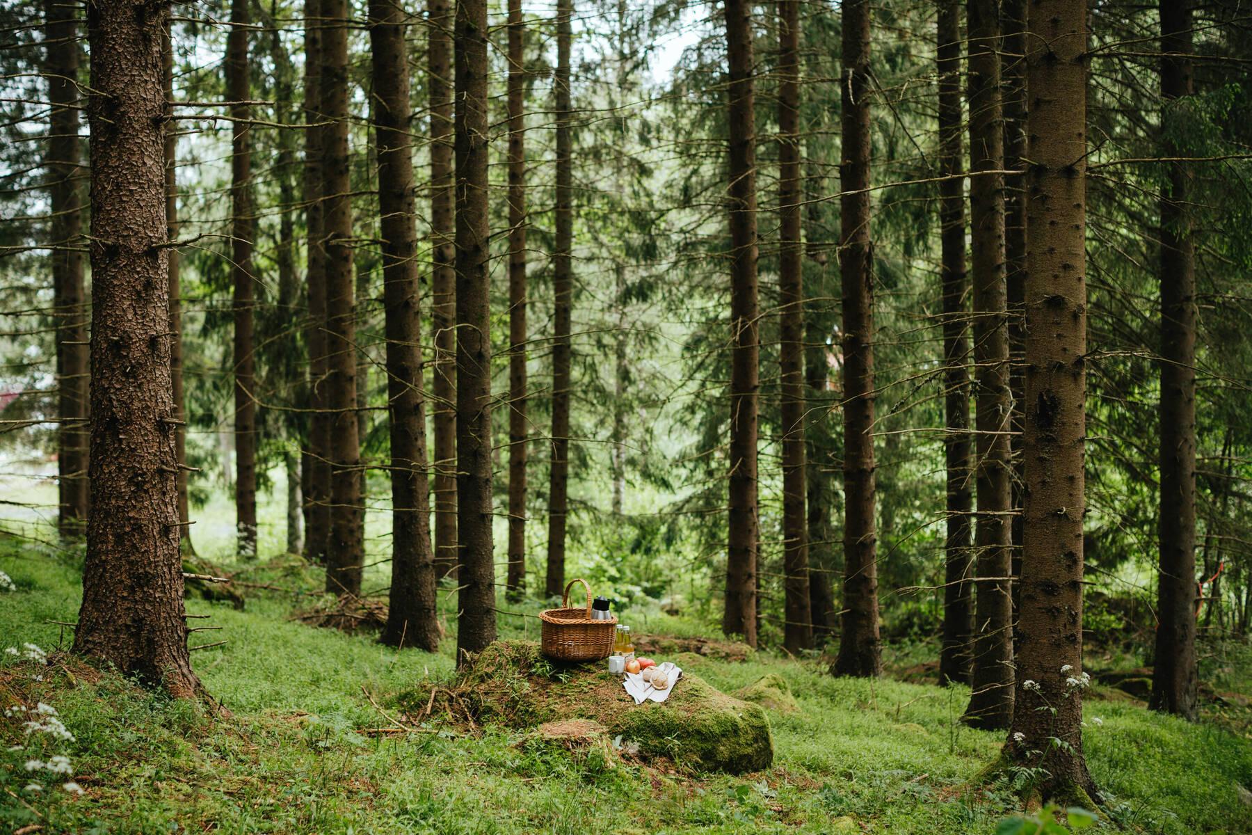 Picknickkorg Bauergården