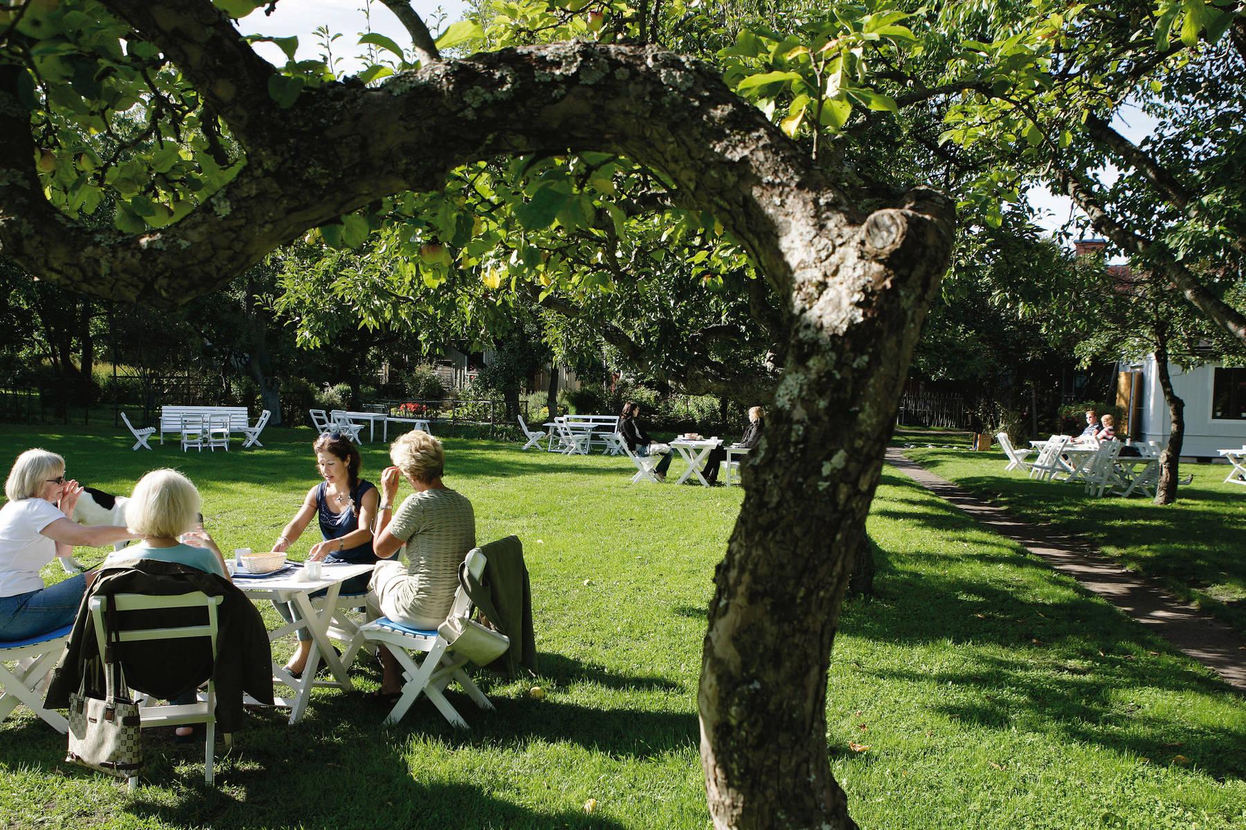 Krusenstiernska Trädgården