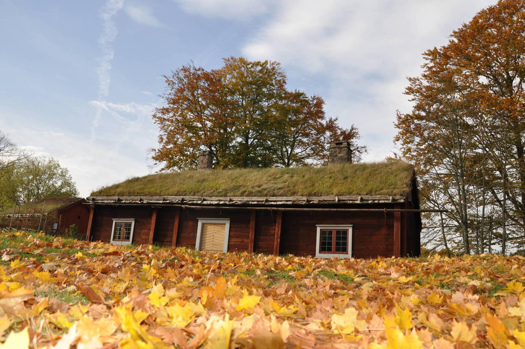 Stuga med grästak i Linnés Råshult, Älmhult