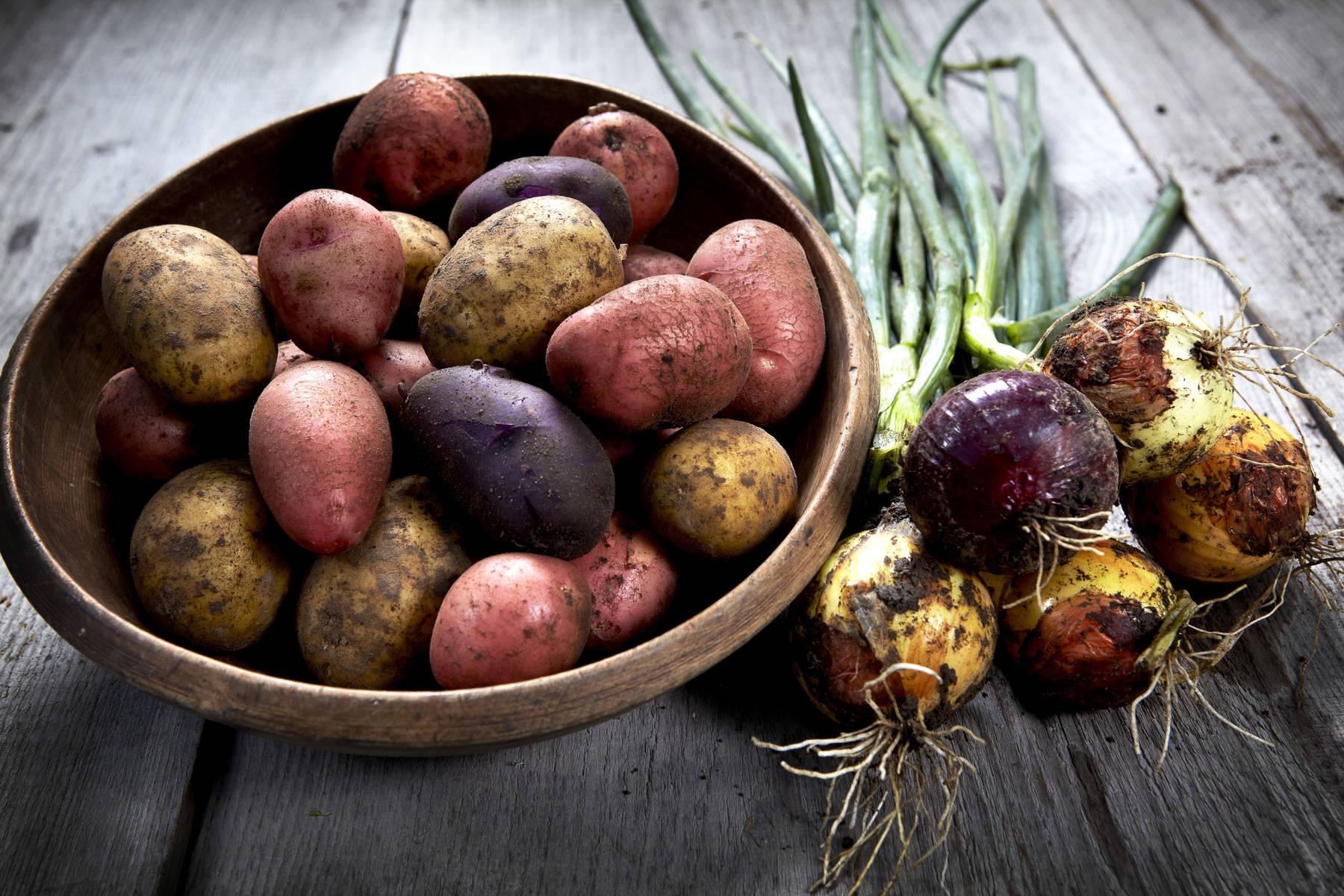 Närodlad potatis och lök