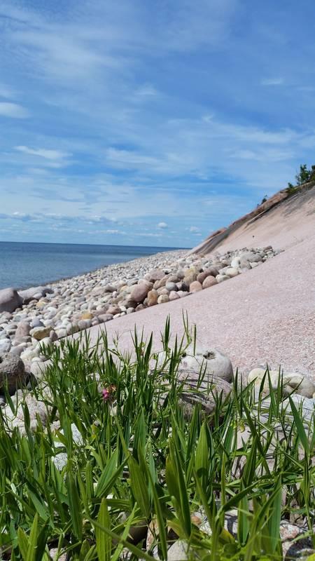 Stenig strandkant