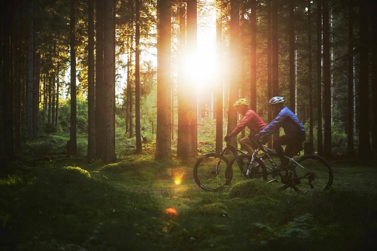 Härlig cykelterräng