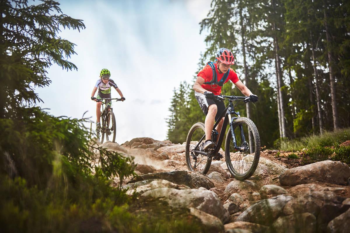 Fart och teknik nedför berget