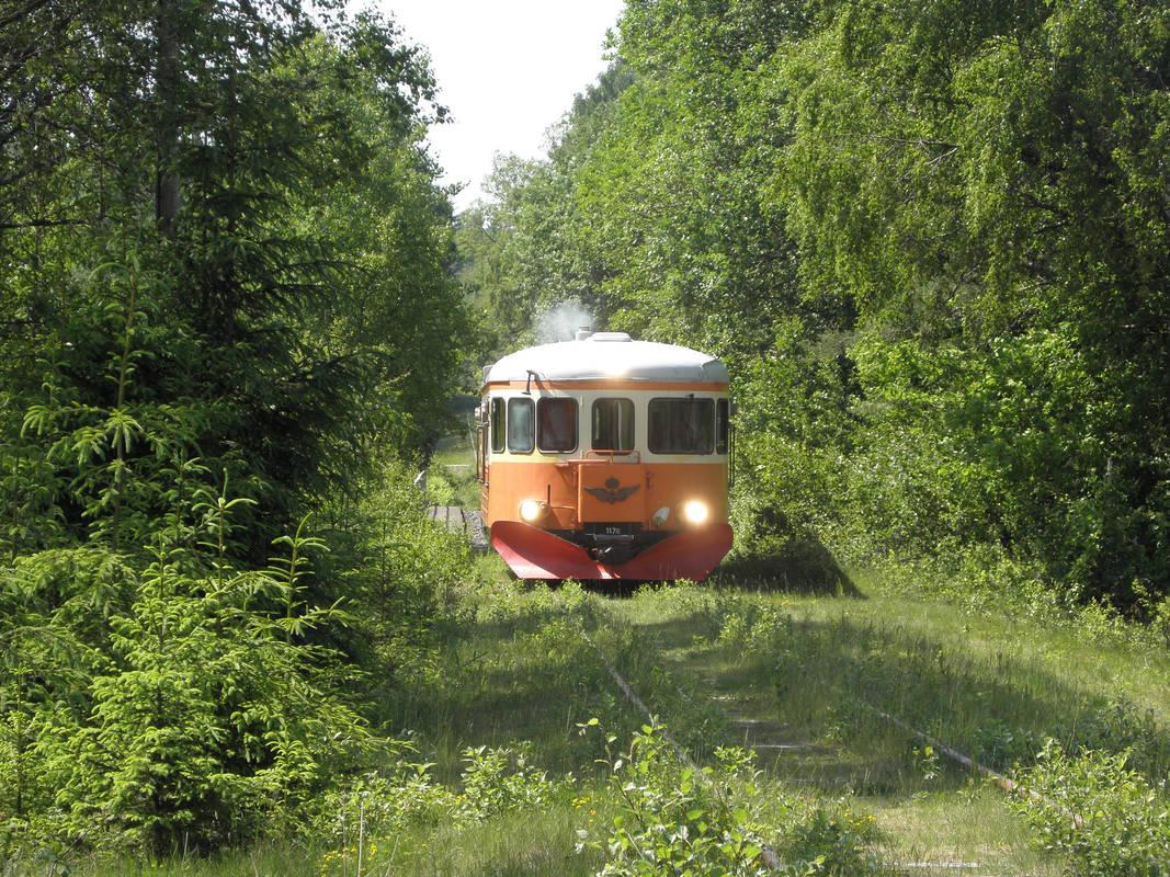 Nostalgiska turer genom Smålands natur