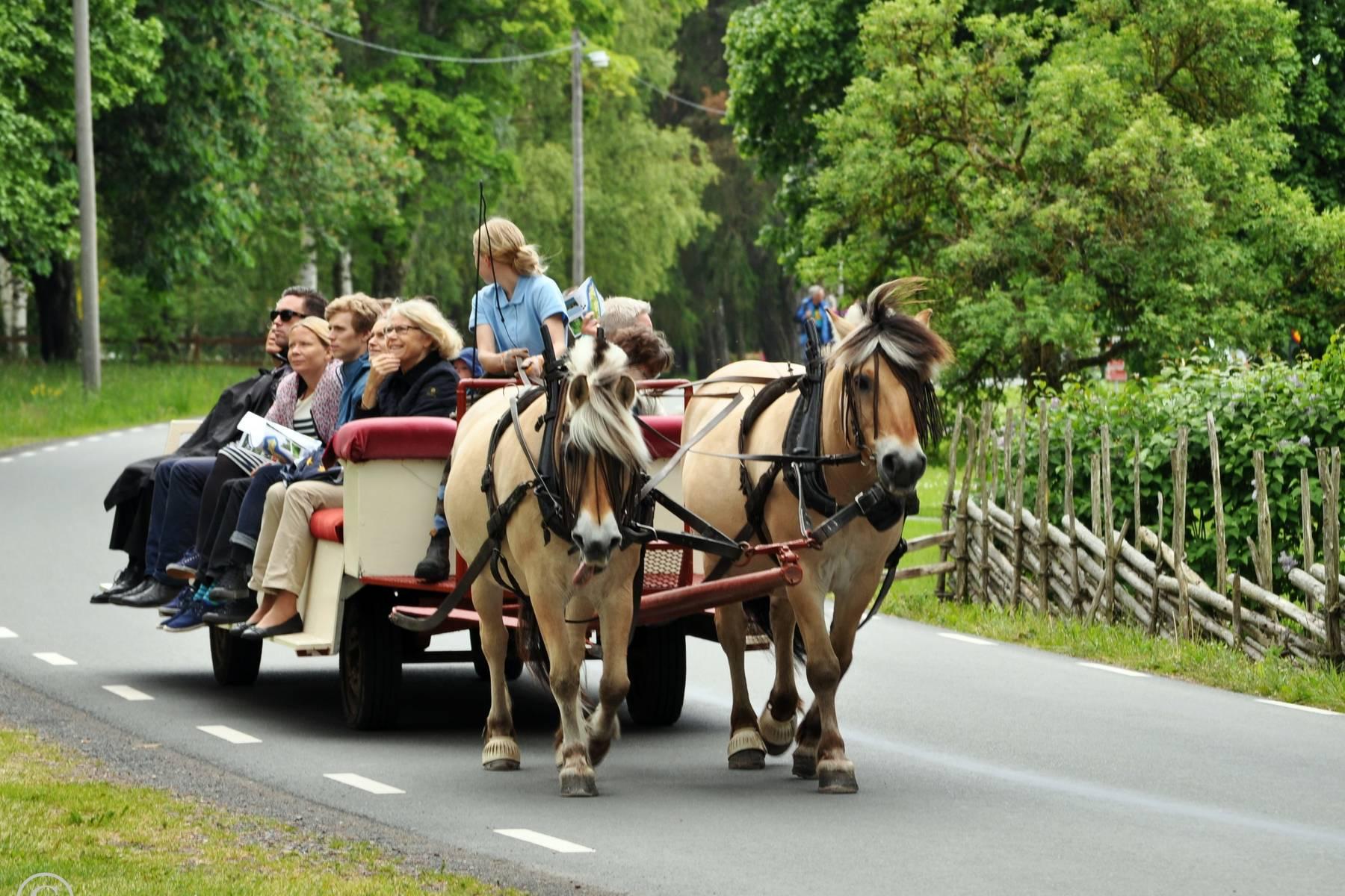 Häst och vagn på Visingsö