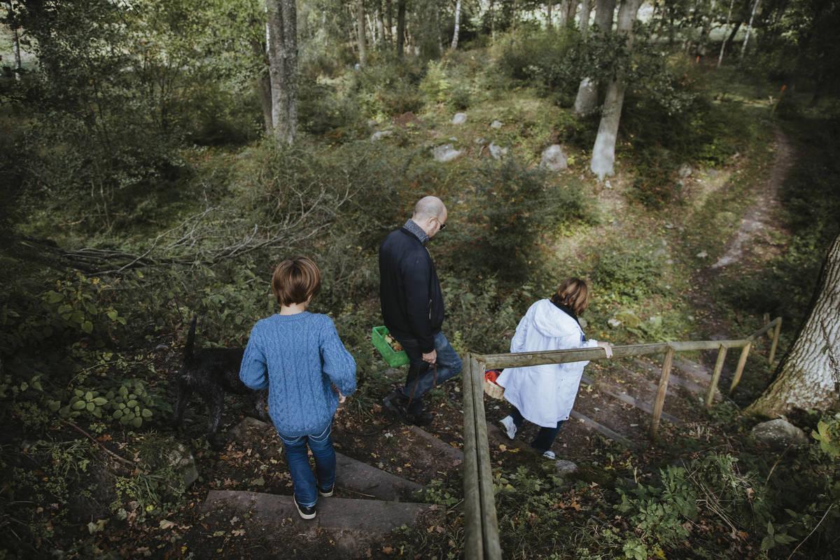 Vandra i Småland