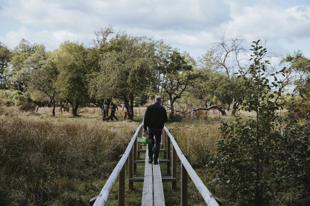 vandra på spång i småland