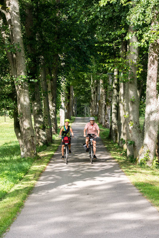Vackra cykelvägar i naturen